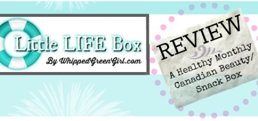 LittleLifeBox review