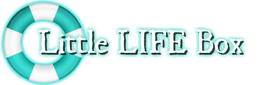 Little Life Box Review and contents