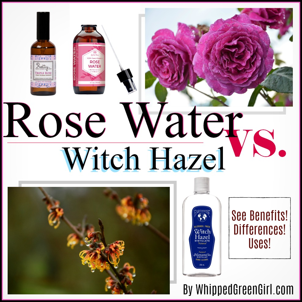 Rose Water VS Witch Hazel - WhippedGreenGirl com