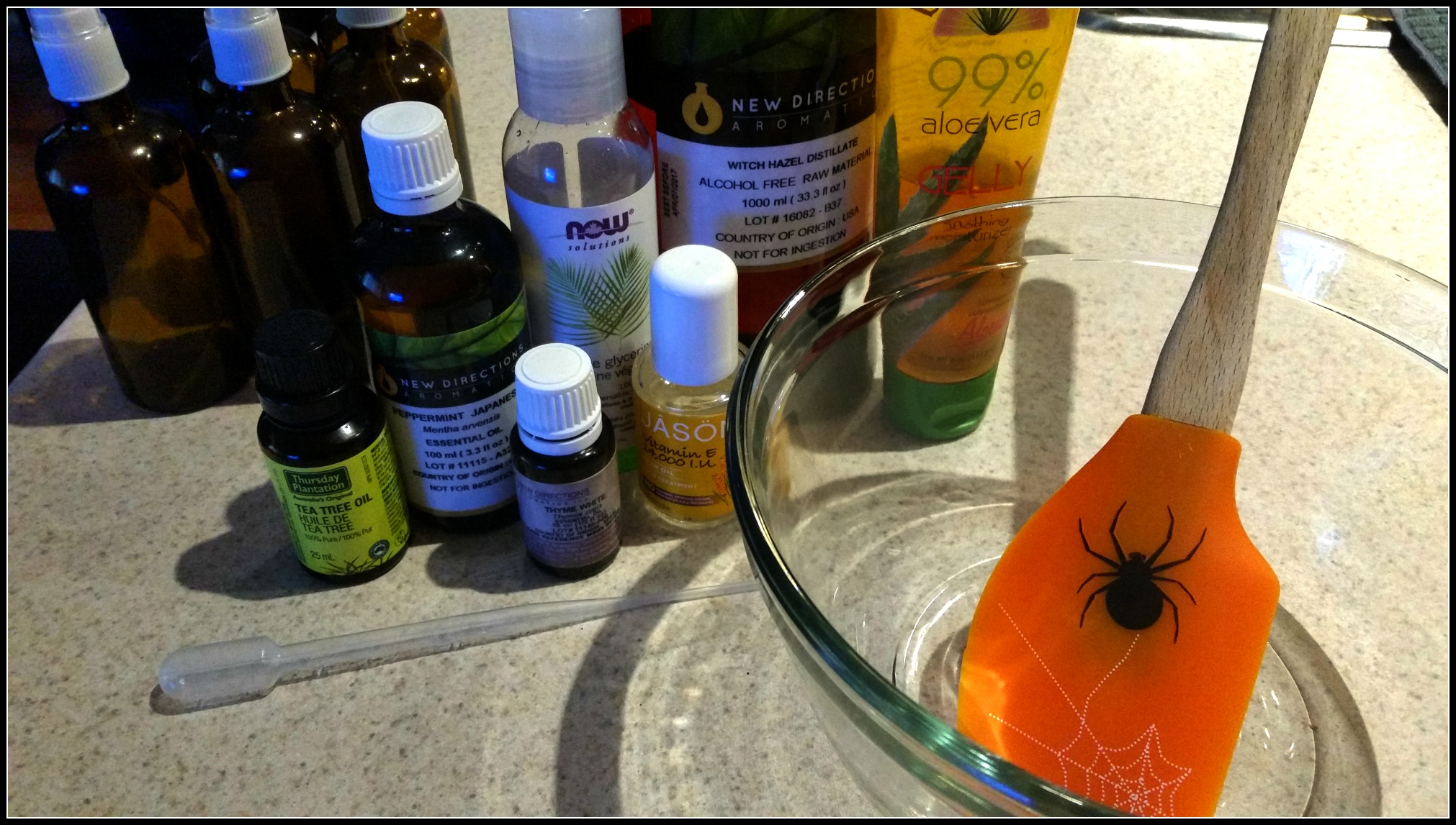 Healthy Hand Sanitizer (Title) Aloe Vera Based – Organic – Non-Toxic (By WhippedGreengirl.com)