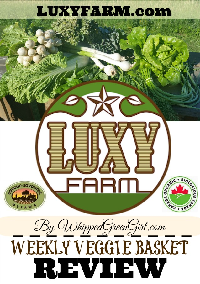 Luxy Farm Review (By WhippedGreenGirl.com) #Organic #Local Weekly Veggie Baskets