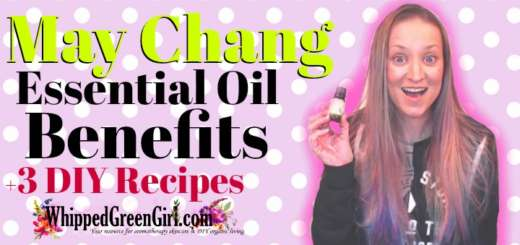 May Chang Essential Oil Benefits (by WhippedGreenGirl.com) #MayChang #EOs #EssentialOils #DIYSkincare #SkincareRecipes #Skincare #DIY